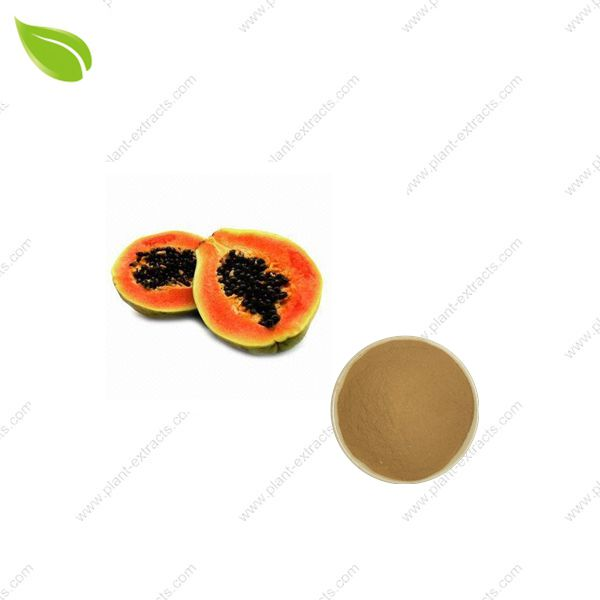 Papaya Juice Powder