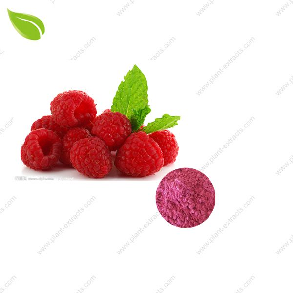 Raspberry Juice Powder