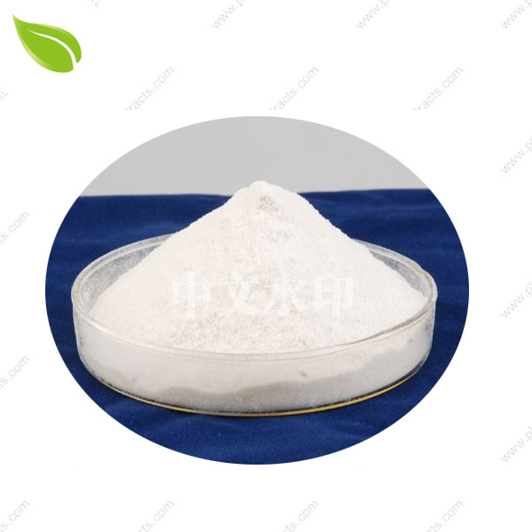 Chitosan Powder